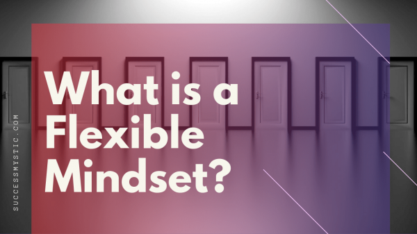 What is flexible Mindset